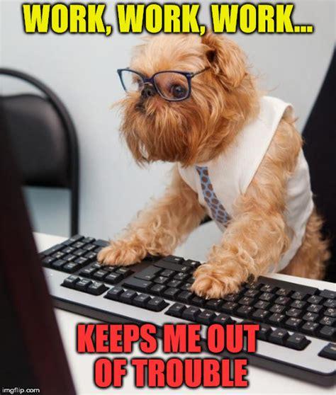 Puppy Meme - work dog imgflip