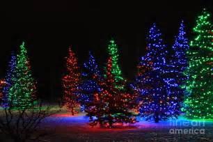light tree ideas decorating