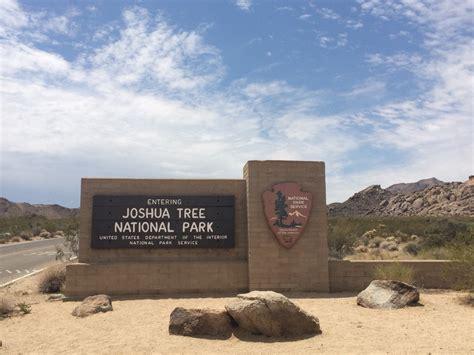Joshua Tree NP / San Diego - steffi-usas Webseite