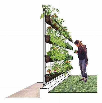 Infill Competition Vertical Garden Community Philadelphia Filed
