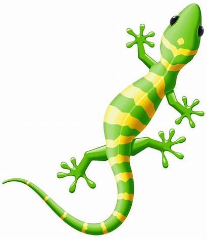 Iguana Clipart Lizard Yellow Spotted Gecko Illustration