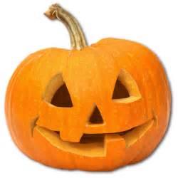 Image result for pumpkin image