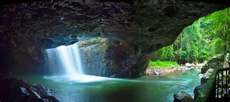 natural bridge springbrook national park
