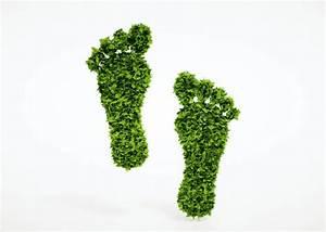 ökologischer Fußabdruck Deutschland : bildung f r nachhaltige entwicklung unterrichtsmaterial ~ Lizthompson.info Haus und Dekorationen