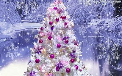 Christmas Backgrounds Snowy Tree Widescreen Pro Ipad