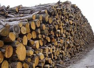 1 Stère De Bois En Kg : 2 m st re chataignier livraison inclus ~ Dailycaller-alerts.com Idées de Décoration