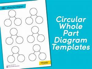 Circular Whole Part Diagram Templates By
