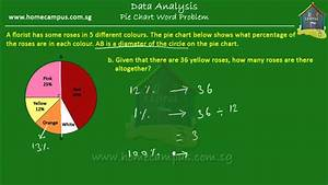 Elementary Math  Grade 6  Pie Charts  Problem Sum 3