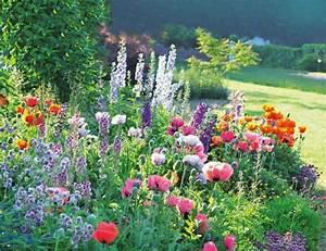 Jardin De Reve : plantes vivaces magnifiques dans votre jardin ~ Melissatoandfro.com Idées de Décoration