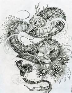 Japanese Dragon Tattoo Sketch   www.pixshark.com - Images ...
