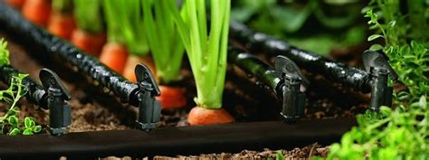 Drip Irrigation   GreenMyLife   Anyone can Garden