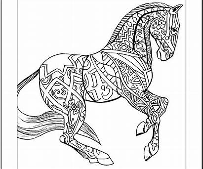 Coloring Horse Pages Hard Animal Zentangle Horses