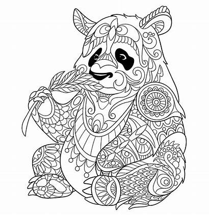 Coloring Pandas Pages Children Animals Justcolor