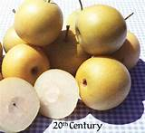 How to buy asian pears