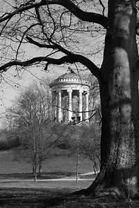 Herbst Schwarz Weiß : der englische garten in schwarz wei hilton munich park schreibt fotowettbewerb aus die ~ Orissabook.com Haus und Dekorationen