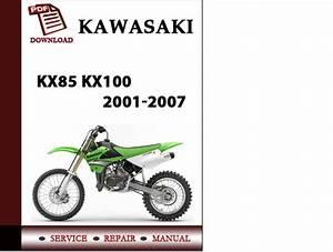 Kawasaki Kx85 Kx100 2001