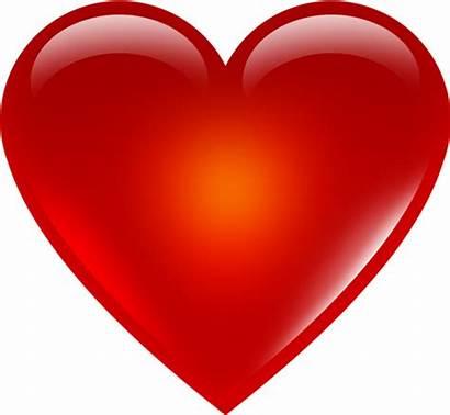 Heart Type Determine Shape
