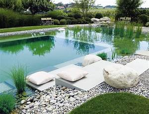 Natural swimming pools natural landscaping gardening for Natural pool designs