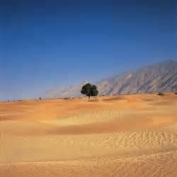 Opinions on Arabian Desert
