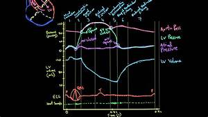 Khan Academy Vid 3  Volume  Ecg  And Heart Sounds In The