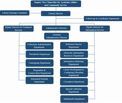 Organizational Chart Squ Library Libraries Organizaton