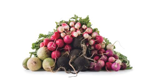 types  radishes bon appetit bon