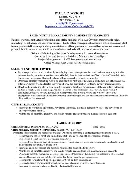 Sales Resume Profile professional profile resume exles resume professional