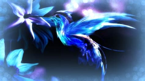 magical blue bird fantasy abstract background