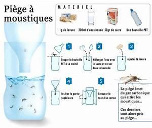 Fabriquer Un Piege A Guepes : fabriquer un pi ge moustique ~ Melissatoandfro.com Idées de Décoration