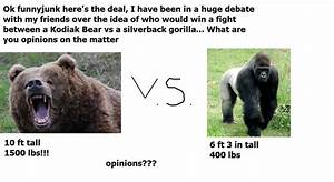 Grizzly Bear Vs Silverback Gorilla Youtube | Autos Post