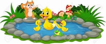 Pond Duck Ducklings Clipart Mother Ducks Teich
