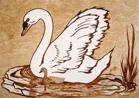 Swan With Chick Original Coffee Painting Painting By Dexam Vintage Turkish Coffee Pot Recipe Maker Uk Beko Parts San Francisco Bay Gourmet Compostable Gourmia Siphon Hazelnut Caffeine