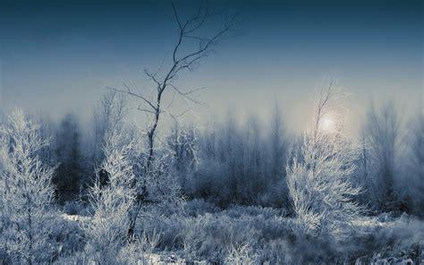dark winter wallpaper gallery