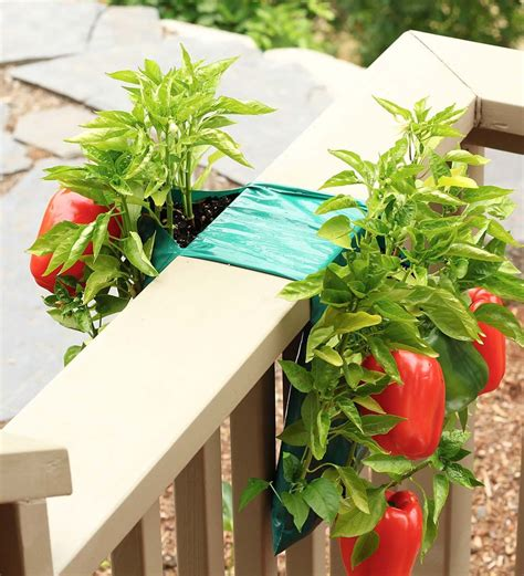 blooming plantables vertical vegetable garden love