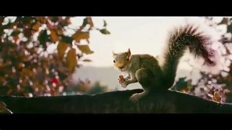 squirrels   trailer  listcom