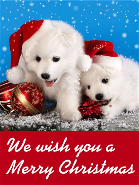 santa puppies christmas card birthday greeting cards