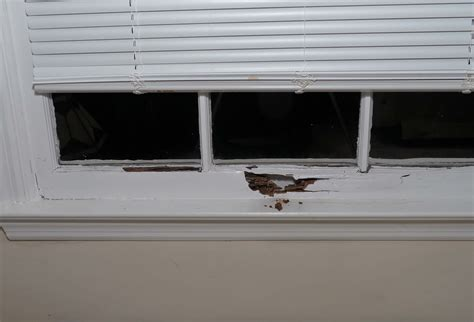 Interior Window Sill Repair by How To Repair Rotted Window Frame Interior Allcanwear Org