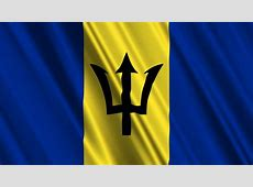 Flag Of Barbados Stock Footage Video 4401665 Shutterstock
