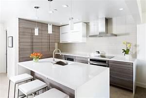 Modele De Cuisine Moderne : cuisine modele de cuisine amenagee fonctionnalies ~ Melissatoandfro.com Idées de Décoration