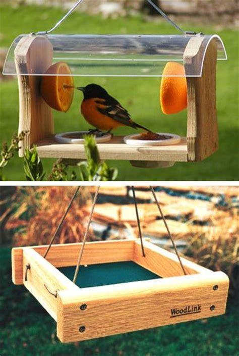 modern bird feeders attract birds  add beautiful yard