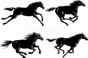 马跑的剪影 Stock Vector - FreeImages.com