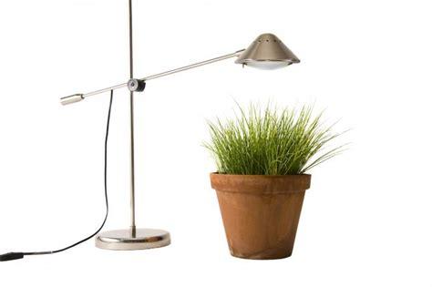 Garten Höhenunterschied Ausgleichen by Mit Der Pflanzenleuchte Lichtdefizite Ausgleichen