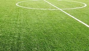 Test  U2013 Vad Kan Du Om Gr U00e4s Och Fotboll