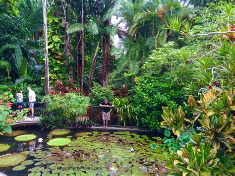 visiting  sunken gardens st petersburg