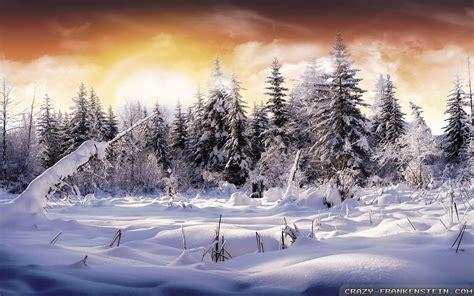 Beautiful Winter Wallpaper by Beautiful Winter Scenery Wallpapers 42 Wallpapers