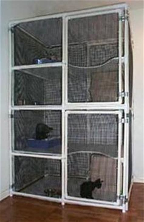 sahja siamese  oriental cage plans pvc pipe cages