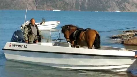 Horses On A Boat by By Boat Greenland Qassiarsuk