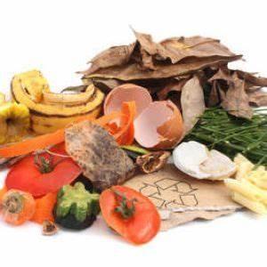 Compost En Appartement : composteur d 39 appartement composter ses d chets ~ Melissatoandfro.com Idées de Décoration
