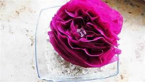 Rose Aus Serviette Drehen : so bastelt man h bsche rose aus servietten ~ Frokenaadalensverden.com Haus und Dekorationen