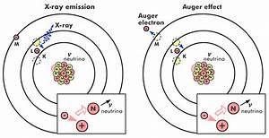 Orbital Electron Capture Relaxation Processes